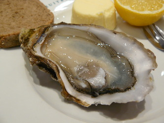 Oyster%20at%20Merle.JPG
