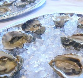 Oysters%20for%20competition.JPG