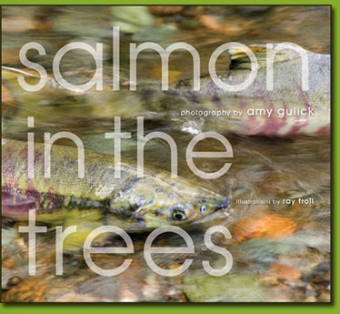 Salmon_Trees_cover.jpg
