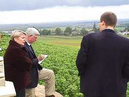 In the vineyards of Le Corton.jpg