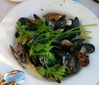 Mussels at Waterfront1.jpg