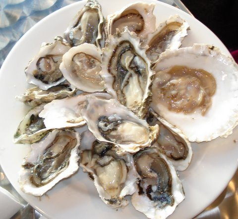 Oysters at Carafe.JPG