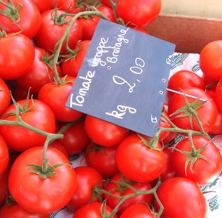 Tomatoes from Brittany.JPG