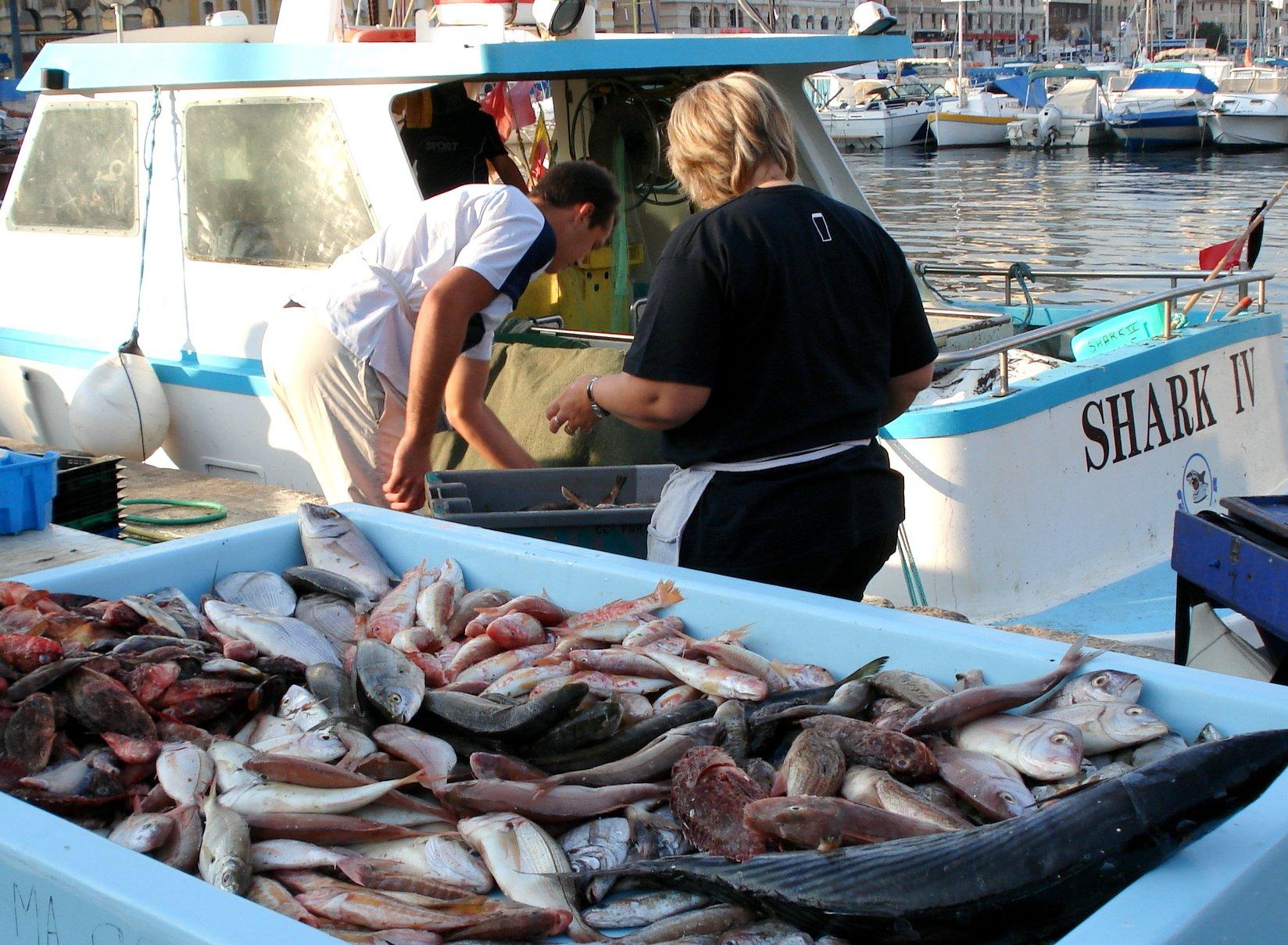 Marseille fish story - Restaurant poisson marseille vieux port ...