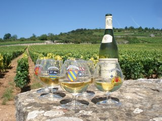 Wine glasses in Puligny Montrachet.JPG