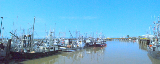 Steveston harbor.JPG