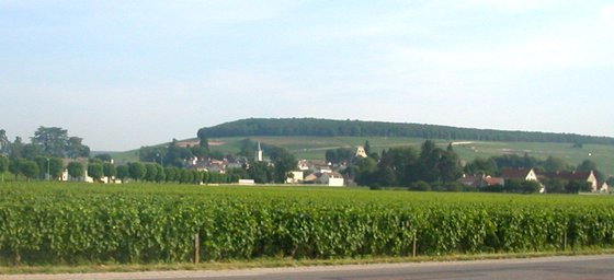 Along RN 74 in Burgundy.JPG