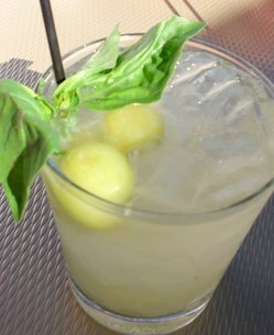 Basil w cocktail.JPG