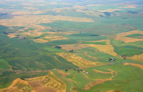 Palouse from the air.JPG