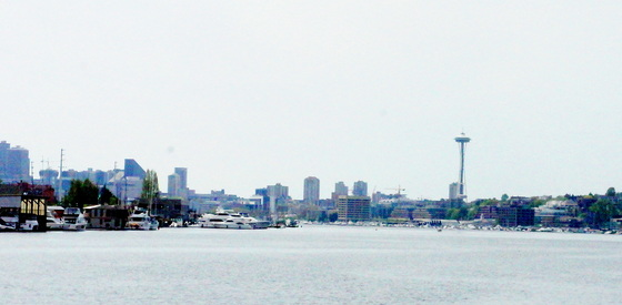 Skyline view from Salmon House.JPG